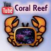 Coral Reef с Антоном Добасевичем - последнее сообщение от crab